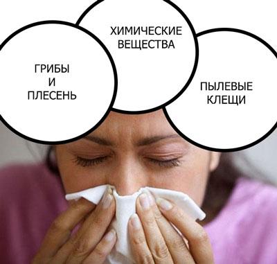 Главные раздражители, вызывающие аллергию на обои